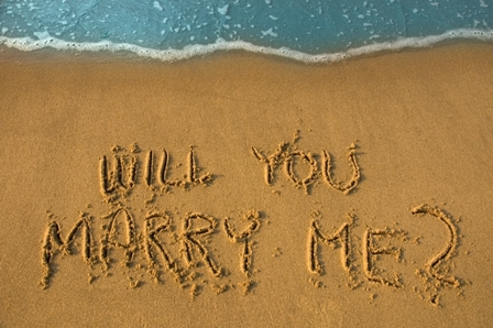 will you marry me? | marcella purnama